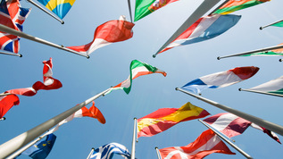 Flags of the European Union (Refers to: European and International Cooperation)